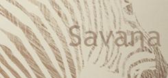 THE SAVANNA
