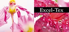EXCEL-TEX